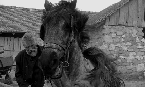 Turin Horse, The (1)