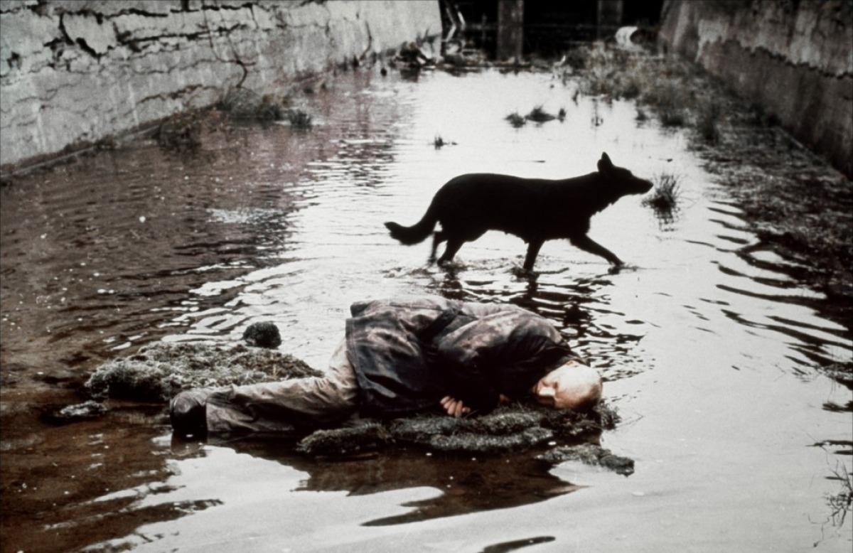 """Сталкер"", реж. Андрей Тарковски, 1979 г."
